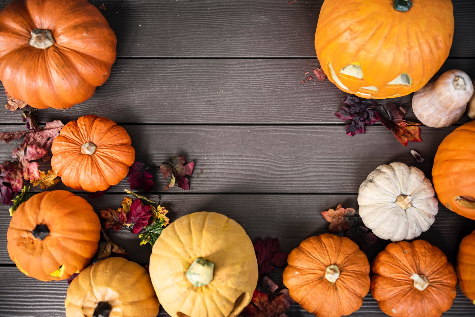 hosting a great halloween party | catering cc